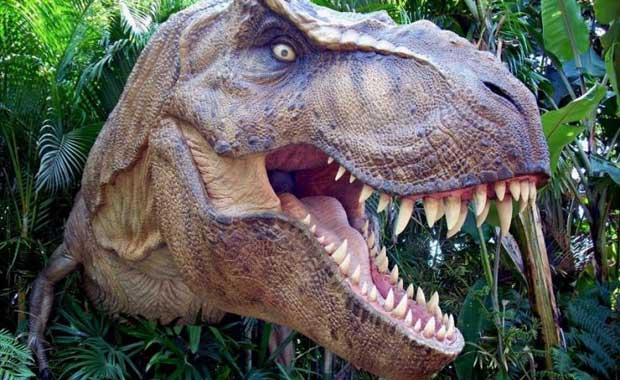 Dinozorlar Aptal Birer Hayvan Mıydı?