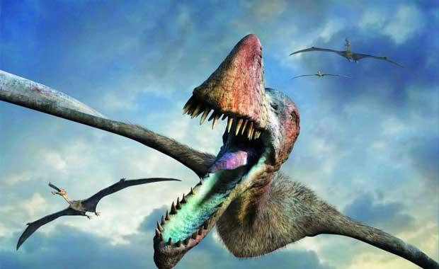 Kuşlar Dinozorlardan Mı Evrimleşti?