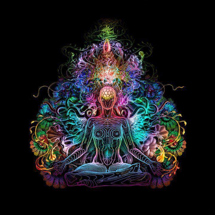Çakra, Sanskritçe'de tekerlek manasına gelmektedir. Genellikle ateş çarkı olarak ifade edilmektedir. İnsan bedeninde, çakra olarak bilinen; yedi temel enerji merkezi bulunmaktadır.