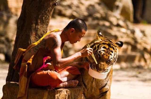 15. Budizm ateist bir din; herhangi bir yaratıcının varlığını kabul etmiyor.