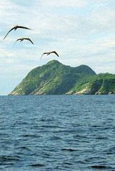 Bu adaya gitmek cesaret ister