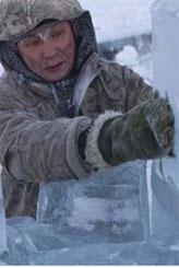 Dünyanın en soğuk yerinde hayat