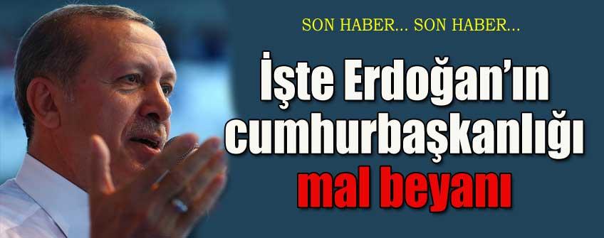 İşte Erdoğan'ın cumhurbaşkanlığı mal beyanı