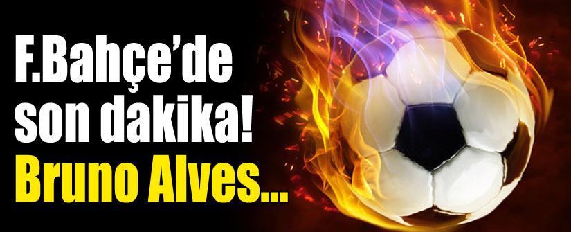 Bruno Alves idmanda!