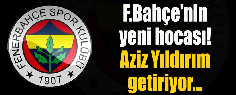 Fenerbahçe'ye yeni hoca! O isim...