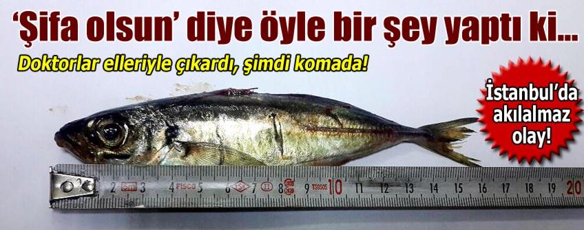 16 cm'lik canlı balığı şifa için yutmaya kalkınca...