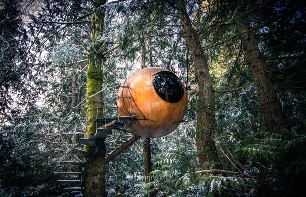 UFO benzeri ağaç evi oteli görenleri şaşırtıyor