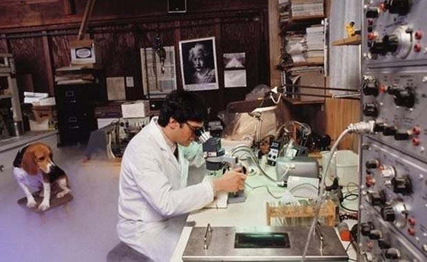 Bilim dünyası bu projenin peşinde! Ölüleri diriltecekler