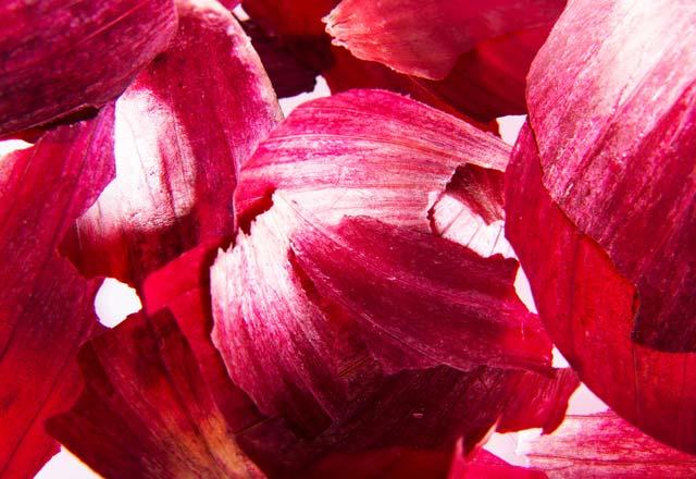 Soğan kabuğunun inanılmaz faydaları