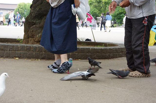 Güvercin ayakkabılar herkesi hayrete düşürdü