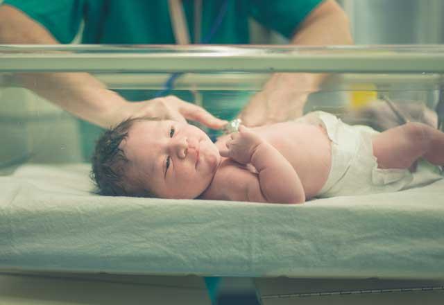Bebekler hakkında daha önce hiç duymadıklarınız