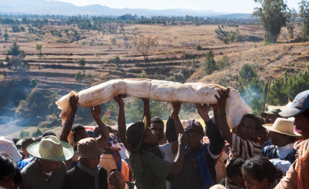 Madagaskar'da bir tuhaf festival: Famadihana