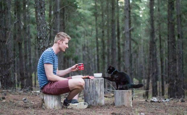 Şirketteki işini bırakıp karavanı ve kedisiyle gezerek para kazanıyor