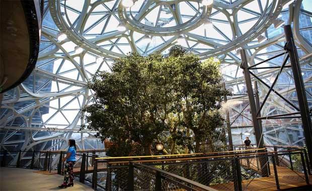 Amazon, yağmur ormanı konseptli yeni ofisini açtı
