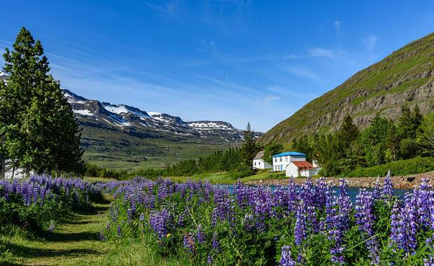 Farklı bir yaz rotası: İzlanda