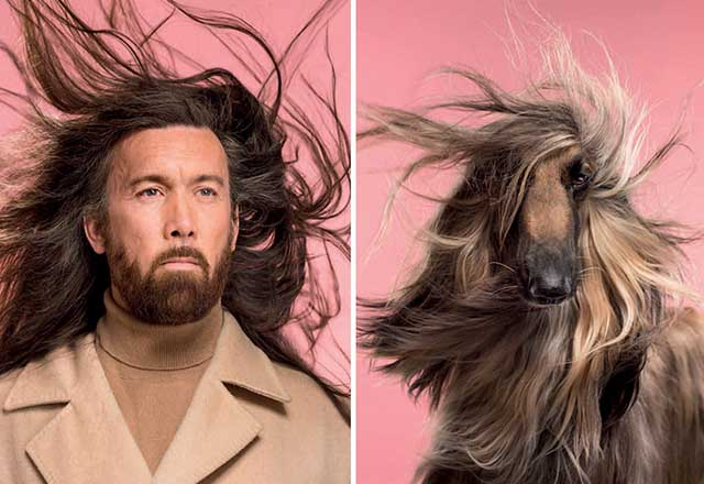 Sahibine benzeyen köpeklerden şaşırtıcı fotoğraflar