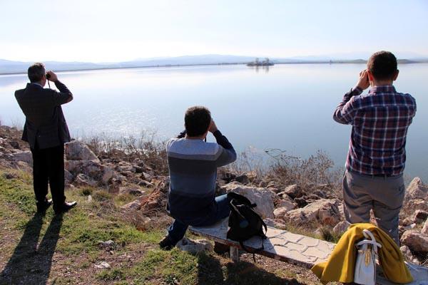 Suların yükseldiği gölün ilk konukları geldi