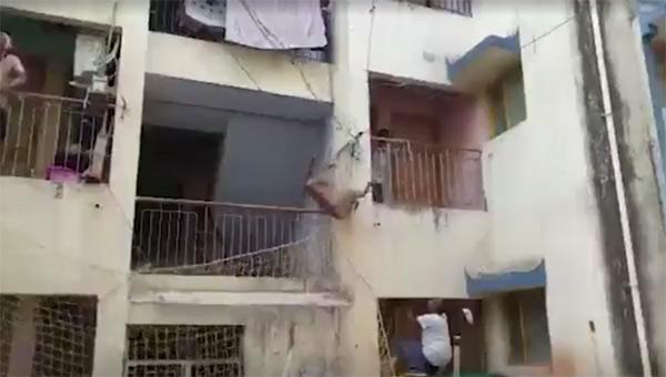 Çığlıklar yükseldi, balkondan atlayıp... Mahalle ayağa kalktı!