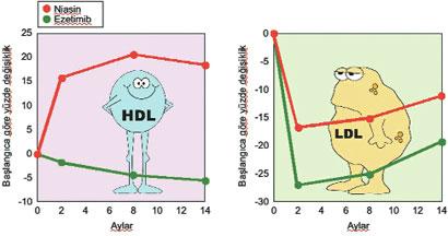 hdl kolesterol