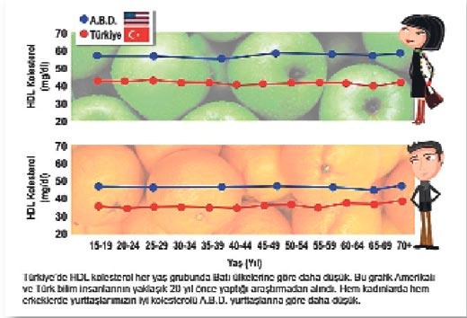 Ldl Kolesterol Düşüklüğü