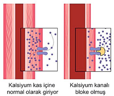 Kan basıncı nedir için en gözden kaçan çözüm