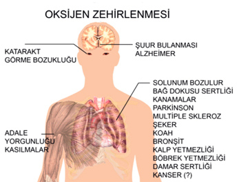 Fazla Oksijen öldürür