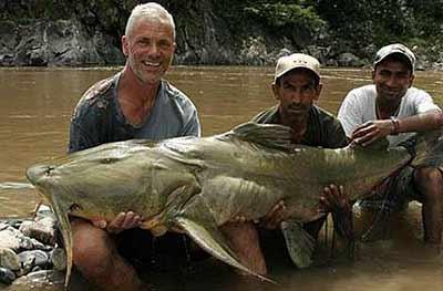 В индийской реке Великая Кали поймали рыбу-мутанта, которая убивала...