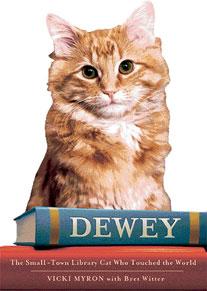 Kütüphanede yaşayan kedi Dewey'in kitabı