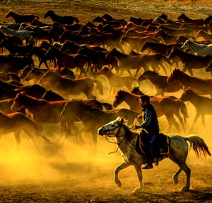 Erciyes'in yılkı atları fotoğrafçıların yeni tutkusu oldu