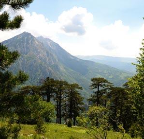 Bosna Hersek Sutjeska Milli Parkı