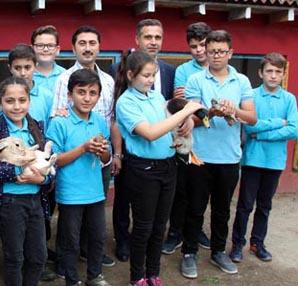 Okula hayvanat bahçesi kurdular