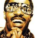 Stevie Wonder konseri için geri sayım başladı!