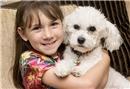 Epilepsi nöbetinden köpeği kurtarıyor