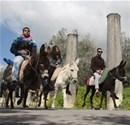 """Filistin'de """"eşek"""" sırtında tarih yolculuğu"""