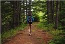 En yeni wellness trendi: Orman banyosu