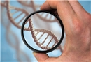 Genetiğimizin iç dünyamız hakkında söyledikleri
