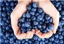 Kanserle mücadele eden gıdalar