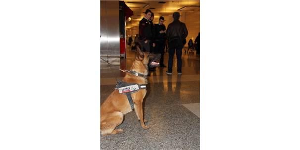 Atatürk Havalimanı'nda güvenlik önlemleri üst düzeye çıkarıldı-İstanbul Haberleri