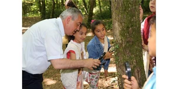 ORMAN KAŞİFLERİ BAŞKAN AYDIN'LA KEŞFE ÇIKTI
