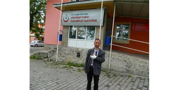 ÇOBAN KURT SALDIRISINA UĞRADI