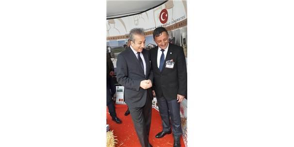 Mahmudiye'deki Atçılığı İstanbul'da Tanıttılar