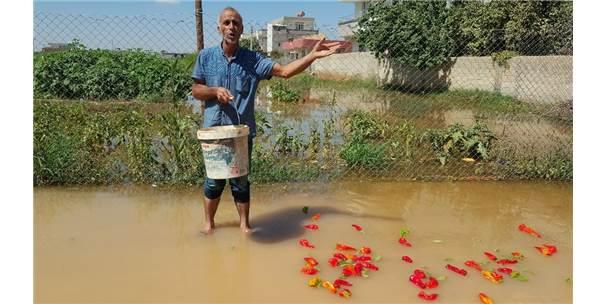 Suruç'ta Ev Ve İş Yerlerini Su Bastı