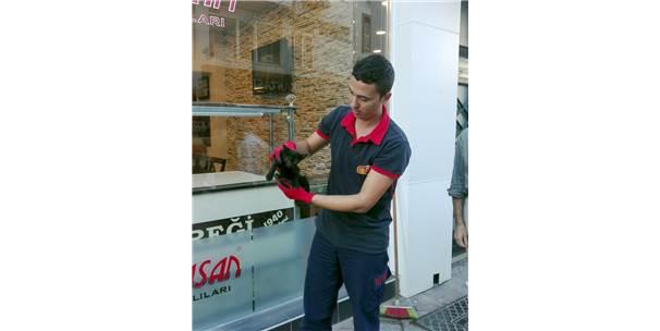 Karamürsel'de Otomobile Giren Kedi Çıkarıldı