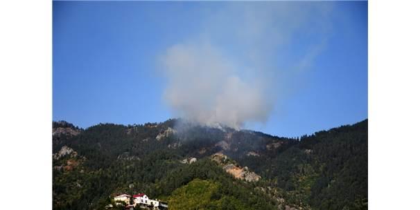 Gümüşhane'de Orman Yangını