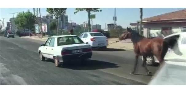 Otomobilin Arkasına Bağlanan At Görenleri Şaşırttı