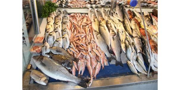 İspanya'da Türk Balığına Yoğun İlgi