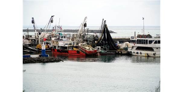 Balıkçıların Yeni Umudu; Lüfer