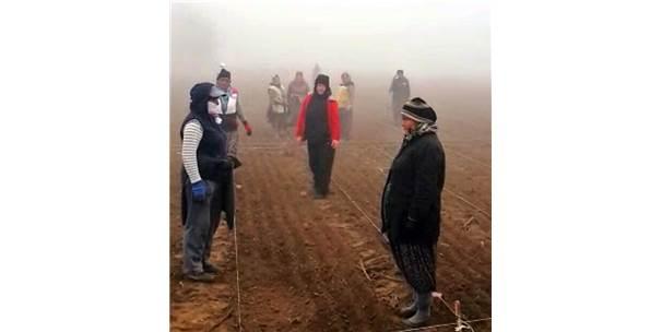 Gazi Mustafa Kemal'e Tarlada Çalışan Kadınlardan Saygı Duruşu