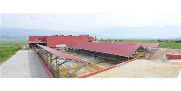 Kahramanmaraş'ta 42 Milyon Liralık Yatırım Başvurusu