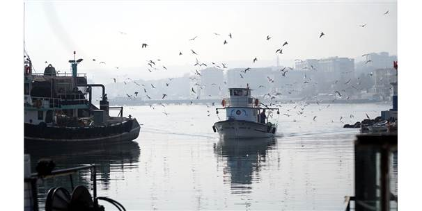 """Küçük Tekne Balıkçıları """"Karides"""" Peşinde"""